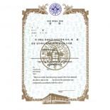 604 Rank Certificate, Taekwondo